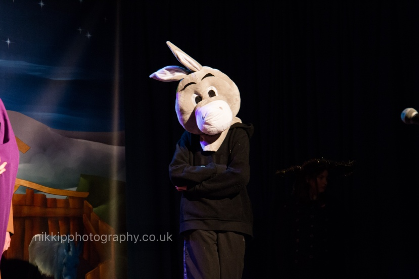 nikki-price-photography-event-stage-theatre-dance-nativity-christmas-donkey